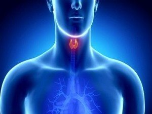10 Steps To Supporting Your Thyroid Naturally| Dr. Hagmeyer 2